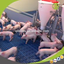 Venda quente Hot Galvanzied Pipe Equipamentos Pecuária Porco Weaner Pean