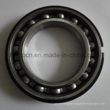Deep Groove Ball Bearing with Locating Snap Ring 6017nr
