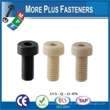 Made in Taiwan Hex Sockel Kunststoff Kappe Schraube Kreuz Recess Pan Kopf Kunststoff Material Schraube
