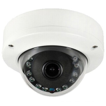 Super Wide Angle Fish-eye CCTV IP Camera Indoor with POE Onvif