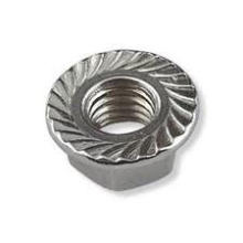 Round Head High Quality Flange Nuts