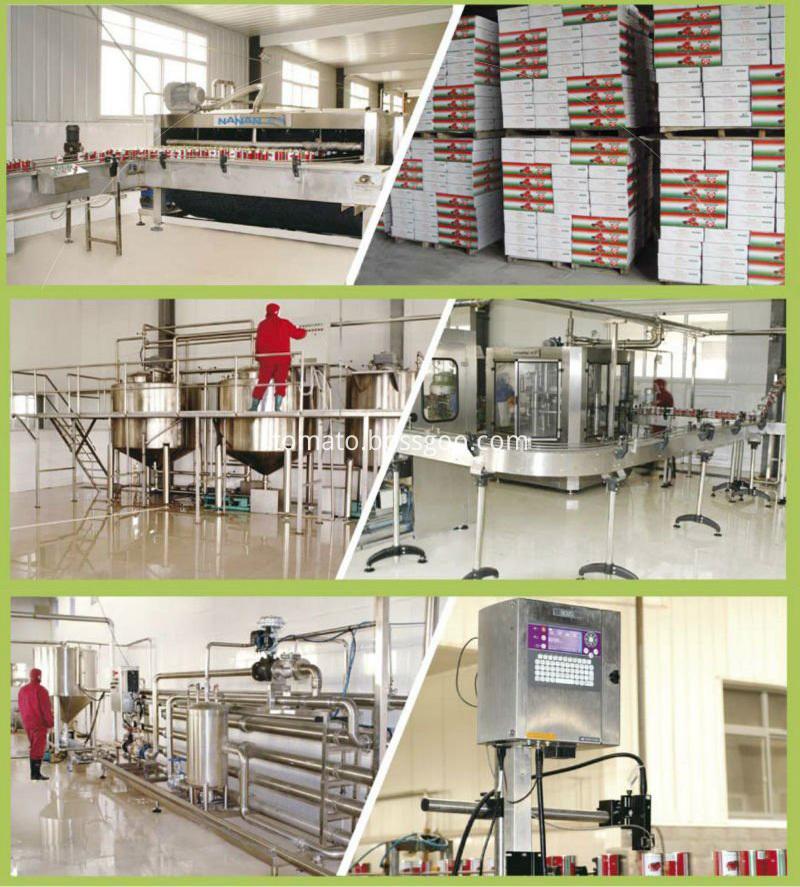 Tomato paste factory