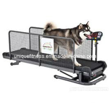 Dog Treadmill, Pet Treadmill, Running Machine Treadmill