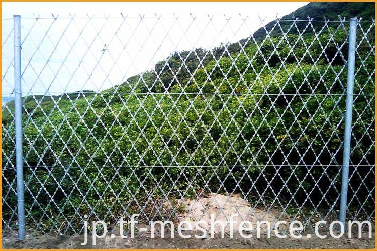 welded concertina razor wire mesh 1