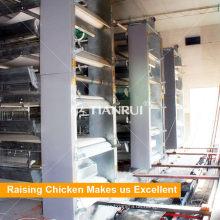 Automatischer elektrischer Hühnerhaus-Reiniger mit Düngemittel-Gurt