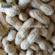 peanut suppliers