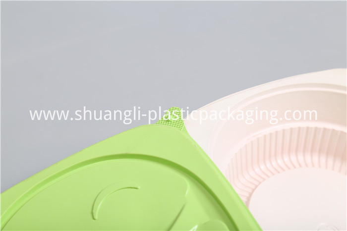 Fast Food Disposable Plastic Container