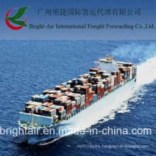 China to Tunisia LCL FCL Shipping Sea Freight
