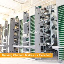 Système automatique de collecte d'oeufs de poulet de vente chaude de Tianrui