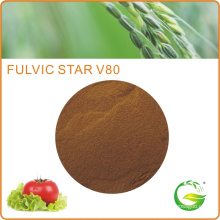 Qfg Bio Fulvic Acid 80% Plants &Mineral Source