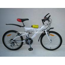 """20 """"bicicleta da armação de aço Moutain (2004)"""