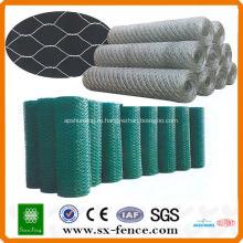 ISO9001:2008 реальный поставка фабрики дешевые Гальванизированная шестиугольная ячеистая сеть