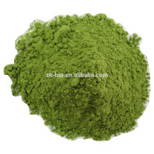 Polvo de Wheatgrass orgánico deshidratado de la venta caliente
