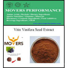 Extracto de planta de alta calidad Extracto de semilla de Vitis Vinifera