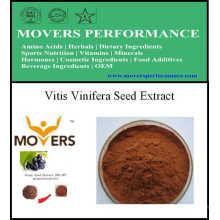 Extrait de plante de haute qualité extrait de graine de Vitis Vinifera