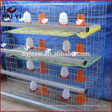 Equipo de aves de corral / aves de corral alimentador de barrena / equipo avícola granja de pollos