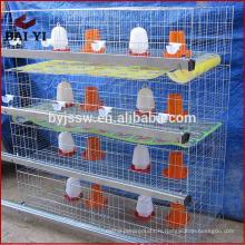 Matériel de volaille / mangeoire à vis sans fin pour volaille / poulailler