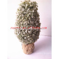 2014 Latest artificial plants and trees with white ornaments