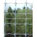 Hot Sale Fixed Knoted Fence, Deer Fence, Horse Fence