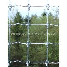 Heißer Verkauf örtlich festgelegter geknoteter Zaun, Rotwild-Zaun, Pferdezaun