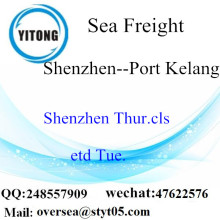 Shenzhen Port LCL Consolidation To Port Kelang