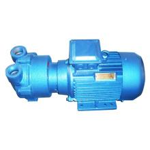 2BV series 1.1kw vacuum pump