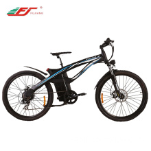 2018 newest lithium battery portable electric bike