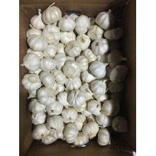 Класс чистый Белый чеснок из Китая на продажу