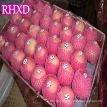 nueva temporada manzana fruta China shandong rojo fuji manzanas India estándar