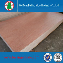 Very Low Price Bintangor Plywood Use for Construction