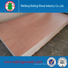 Commercial Plywood for Furniture (1220X2440mm)
