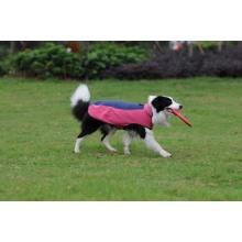 Hund Kleidung Haustier Produkt