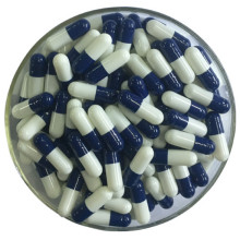 customize capsule pharmaceutical hpmc empty capsules