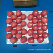 Chinese Fuji Apple Supplier