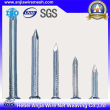 Galvanized Nails Concrete Iron Nails / Roofing Nails