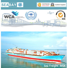 Cheap Fast Sea Freight Shipping Service From China to Worldwide