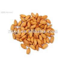Apricot kernel almonds