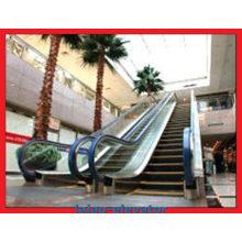 Escada rolante ao ar livre comercial do passageiro de 30 graus 800mm / 1000mm