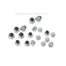 Carbon Steel Stainless Steel Nylon Cap Nut (CZ005)