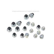 Aço de carbono Aço inoxidável Nylon Cap Nut (CZ005)