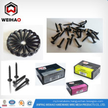 Phillips head drywall screw and black drywall screw on sale in China