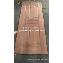 Porte principale de maison indienne conçoit la peau de porte de placage de brique mince