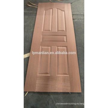 La puerta principal de la casa de la India diseña el revestimiento fino de la puerta de chapa de ladrillo