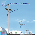 8m Pole 60W Solar LED Street Light (BDTYN860-1)
