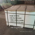 Madera contrachapada comercial de 3 mm / precio de BB / CC Okoume / Bintangor