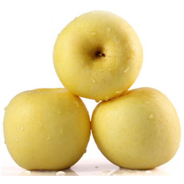 Delicious China Fresh Apple Golden Apple