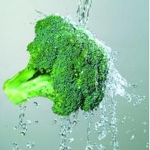 Extrait de brocolis contenant de l'acide ascorbique riche