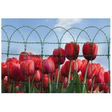 Границы забор сетка Roll цветок
