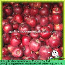 Хуаниу яблочный плод с начала