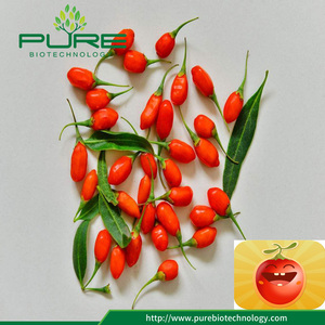 Sunshine berry goji kering / wolfberry